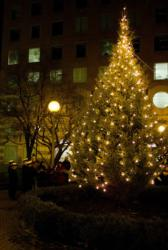 West End tree lighting honors the faithful and the fallen