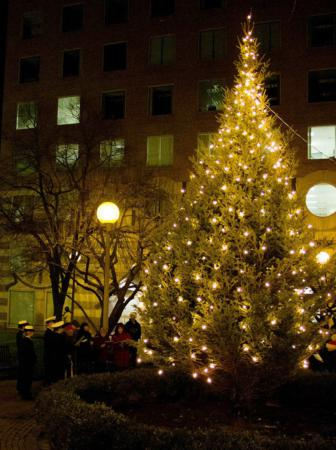 The Tree Lighting At Cushing Memorial Park In Boston Dec 13 2017 Pilot Photo Christopher S Pineo An Old Fashioned Christmas